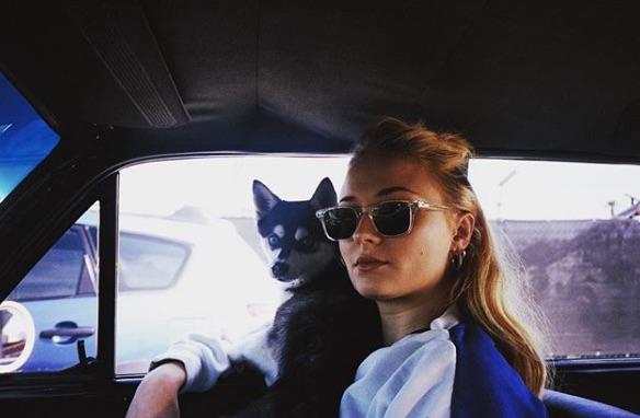 perro de Sophie Turner y Joe Jonas